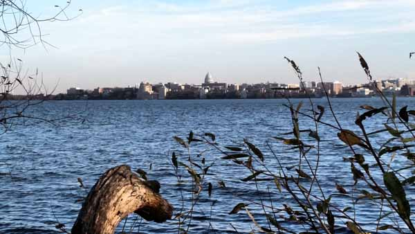You can see the Capital building across the lake from Picnic Point!