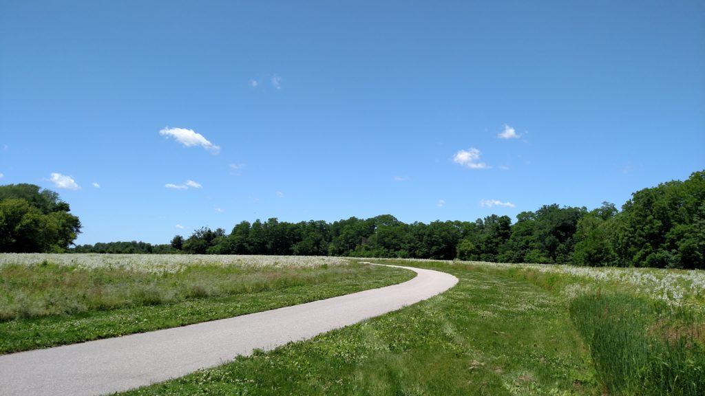 The paved path and Sunderbruch Park