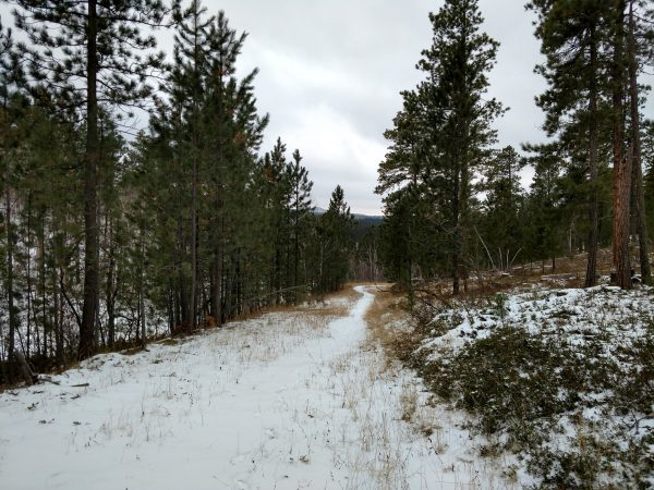 Hiking in the Black Hills