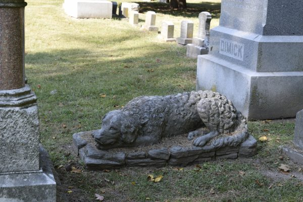 Having an adventure right now will lead you to a lot of interesting stories, such as this one — the tale of the good dog that guards its former masters, forever