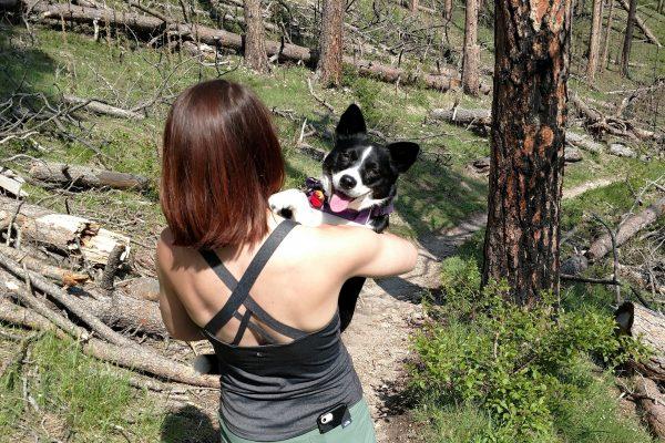 Inkling needed a break from hiking Crow Peak Trail