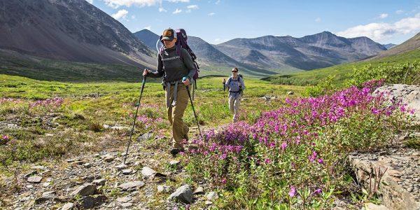Backcountry backpackers