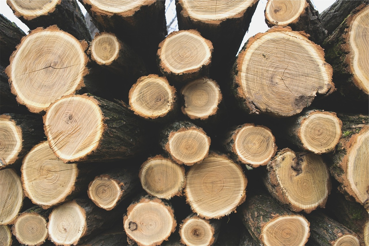 logs-690100_1280