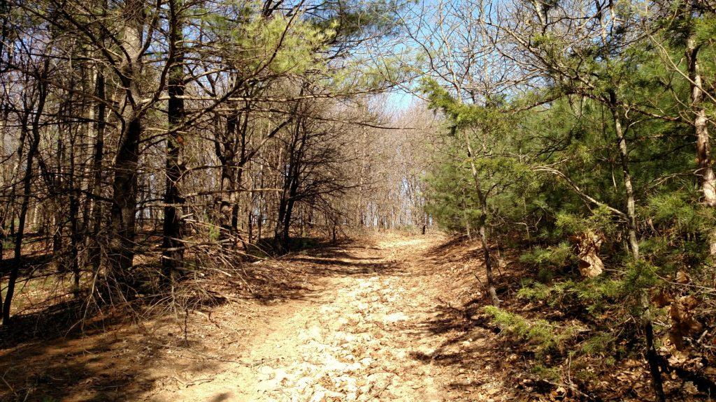 Hiking back to the trail head