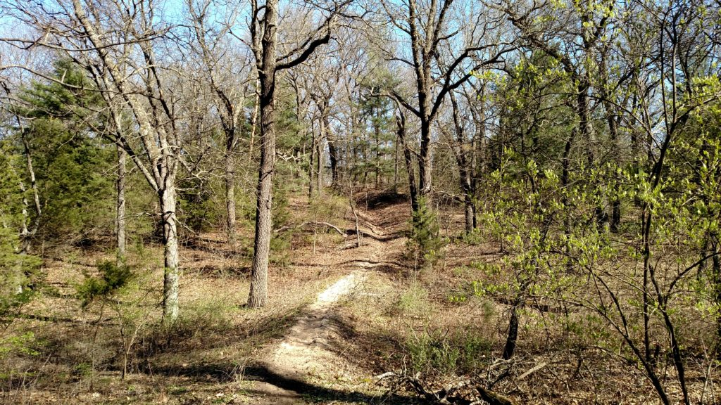 Lost in Sand Ridge State Forest