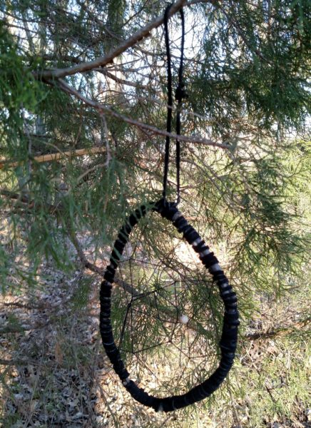 Dreamcatcher at back country site 11