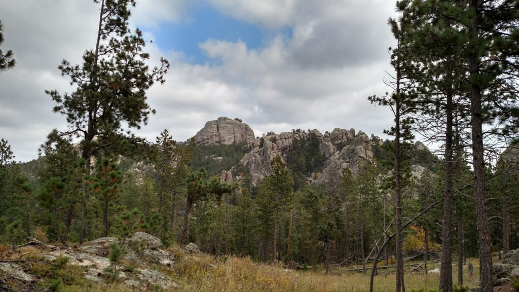 Mountains and ponderosa pines in the Black Hills of South Dakota