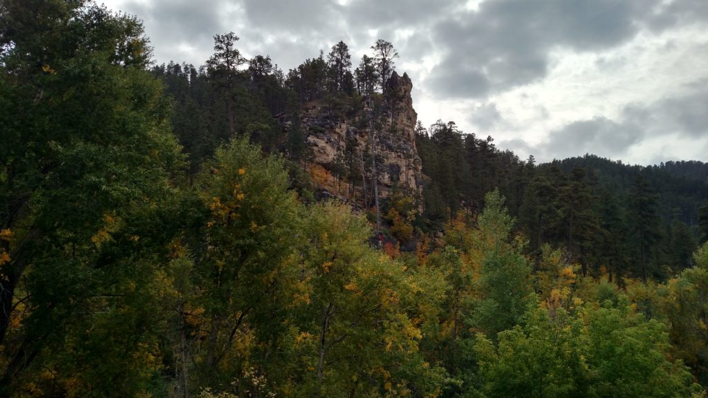 View from the road in Spearfish Canyon
