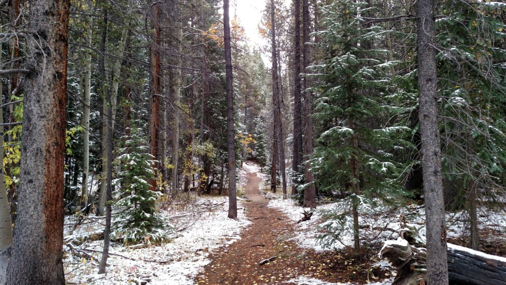 Hiking in Colorado- The Colorado Trail