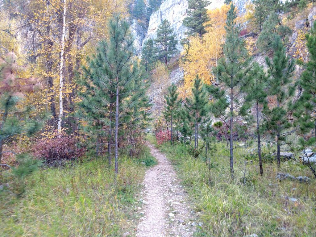 Iron Creek Trail in the Black Hills National Forest.