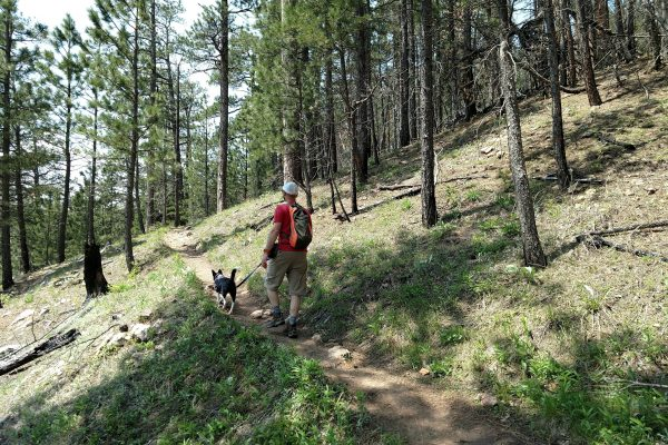 Hiking is an easy gateway to outdoor recreation