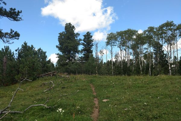 The northern path will lead to Old Baldy Summit