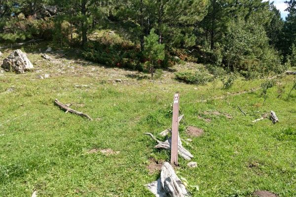 Fallen trail marker