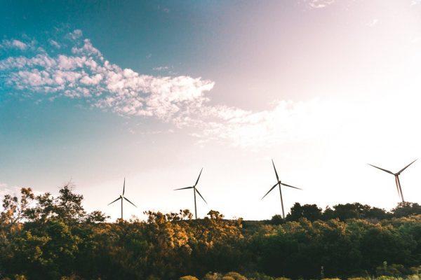 Windmills on the horizon